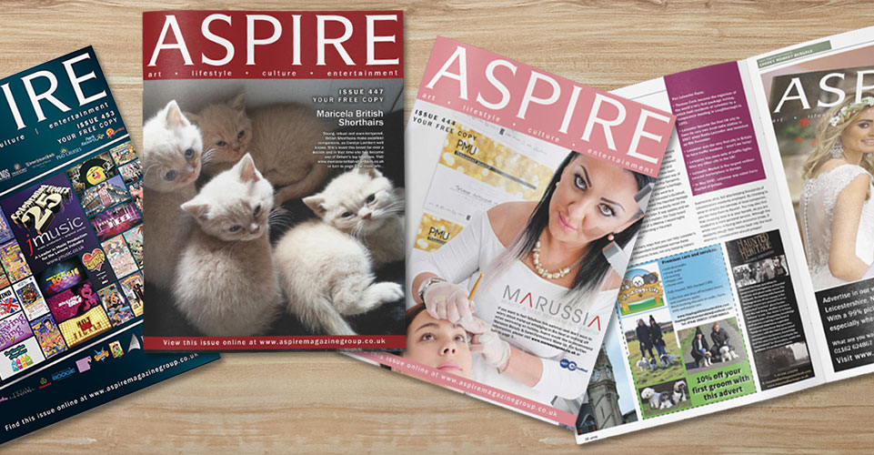Aspire Magazine Website Design and Development